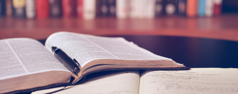 libros-de-seo